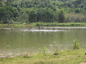 Talapaia Pond